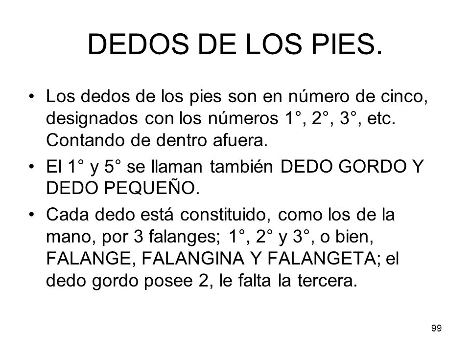DEDOS DE LOS PIES. Los dedos de los pies son en número de cinco, designados con los números 1°, 2°, 3°, etc. Contando de dentro afuera.