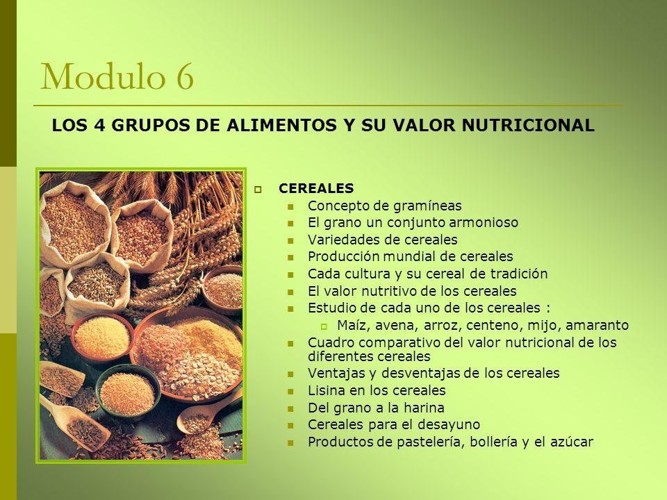 Modulo 6 LOS 4 GRUPOS DE ALIMENTOS Y SU VALOR NUTRICIONAL CEREALES