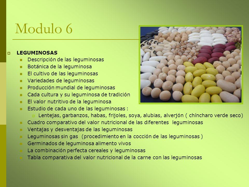 Modulo 6 LEGUMINOSAS Descripción de las leguminosas