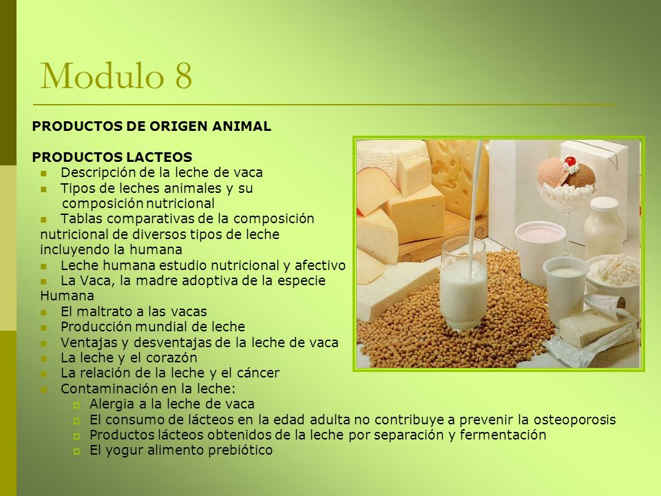 Modulo 8 PRODUCTOS DE ORIGEN ANIMAL PRODUCTOS LACTEOS