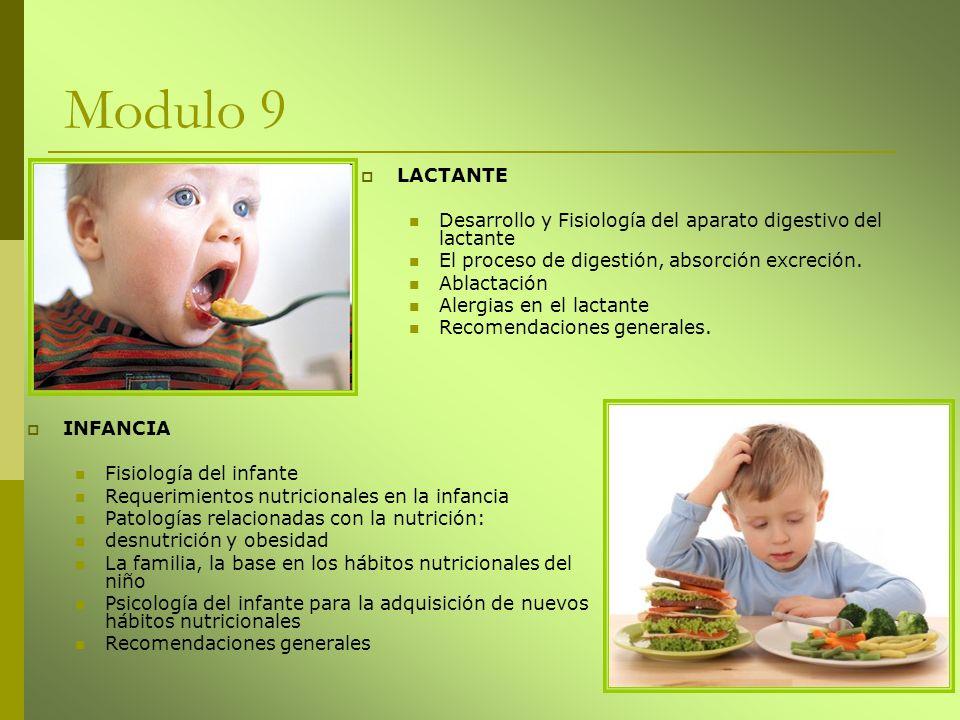 Modulo 9 LACTANTE. Desarrollo y Fisiología del aparato digestivo del lactante. El proceso de digestión, absorción excreción.