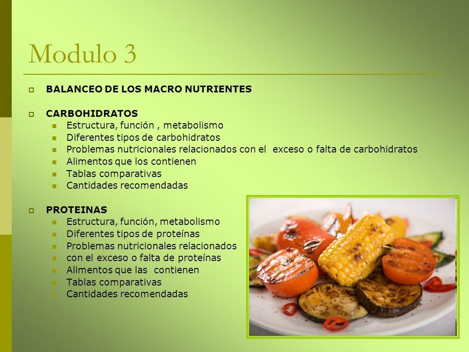 Modulo 3 BALANCEO DE LOS MACRO NUTRIENTES CARBOHIDRATOS