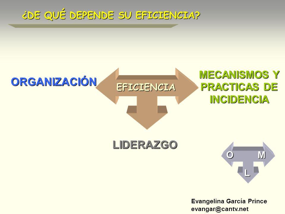 MECANISMOS Y PRACTICAS DE INCIDENCIA
