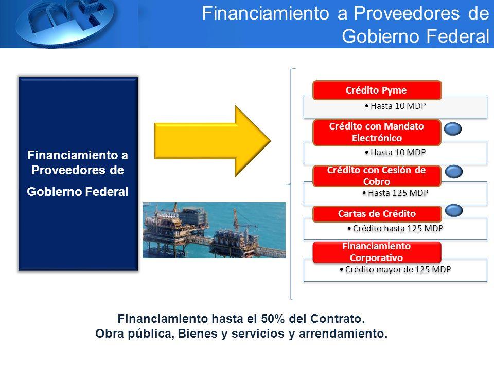 Financiamiento a Proveedores de Gobierno Federal