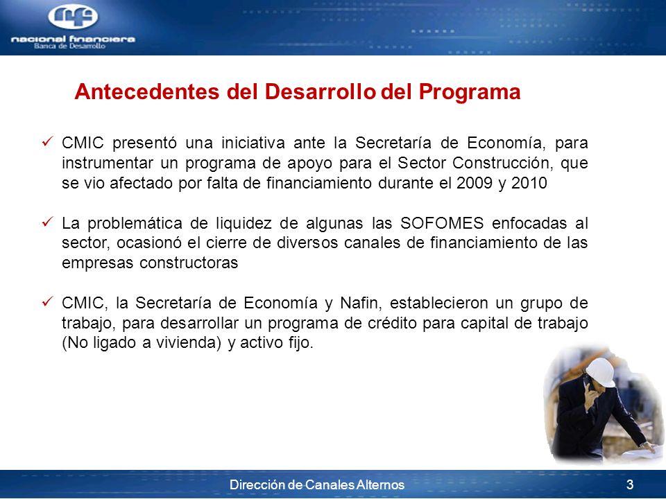 Antecedentes del Desarrollo del Programa