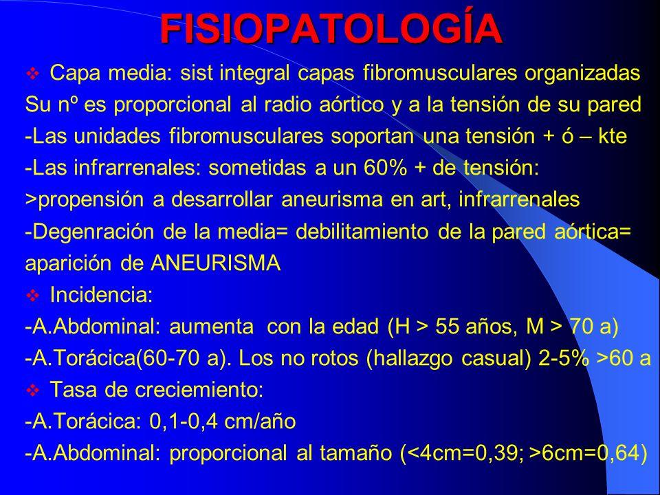 FISIOPATOLOGÍA Capa media: sist integral capas fibromusculares organizadas. Su nº es proporcional al radio aórtico y a la tensión de su pared.