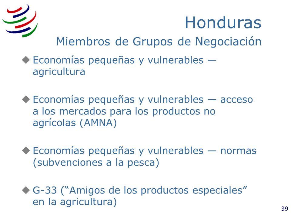 Honduras Miembros de Grupos de Negociación