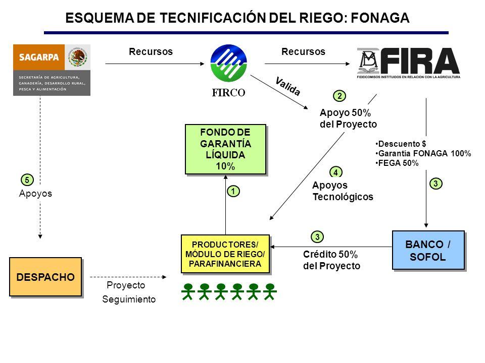 ESQUEMA DE TECNIFICACIÓN DEL RIEGO: FONAGA FONDO DE GARANTÍA LÍQUIDA
