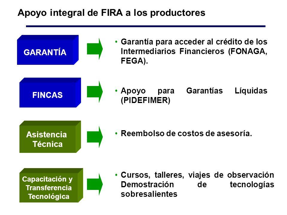 Apoyo integral de FIRA a los productores