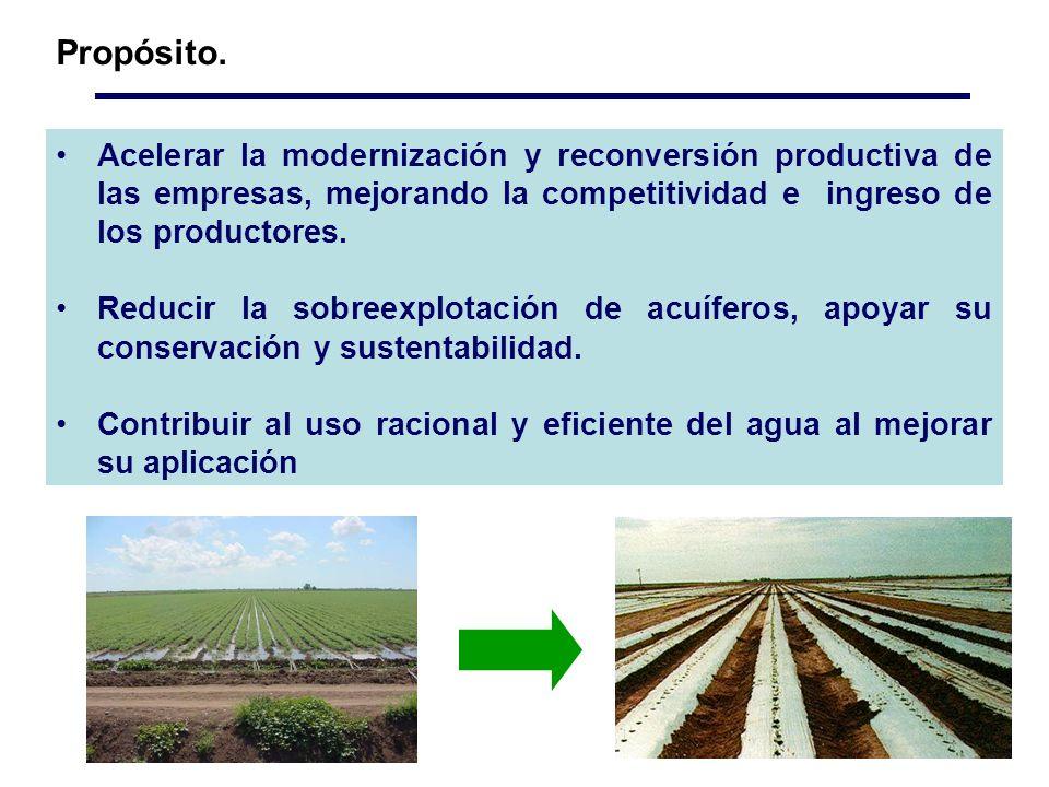 Propósito. Acelerar la modernización y reconversión productiva de las empresas, mejorando la competitividad e ingreso de los productores.