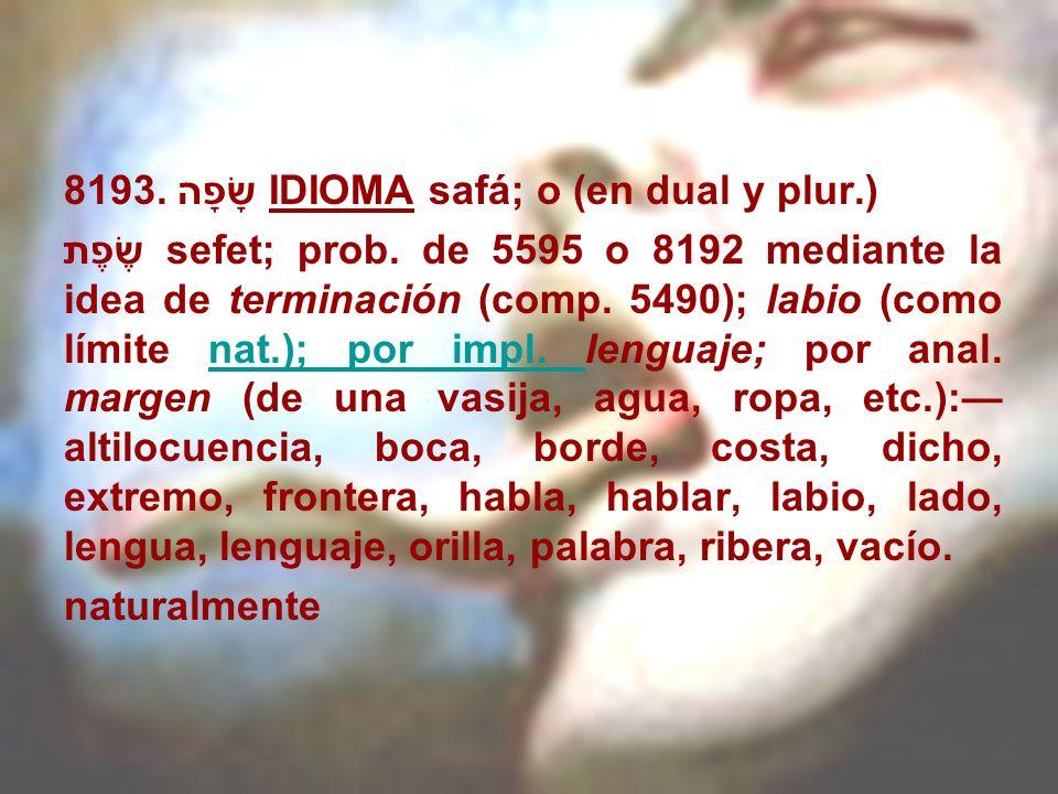 8193. שָׂפָה IDIOMA safá; o (en dual y plur.)