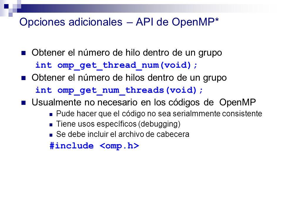 Opciones adicionales – API de OpenMP*