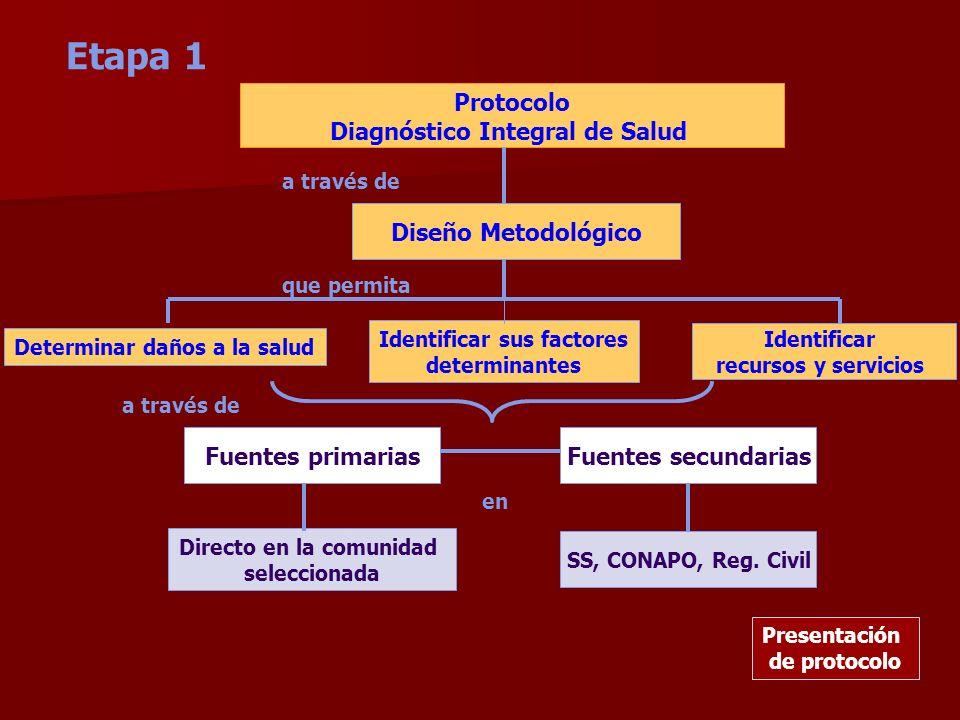 Etapa 1 Protocolo Diagnóstico Integral de Salud Diseño Metodológico