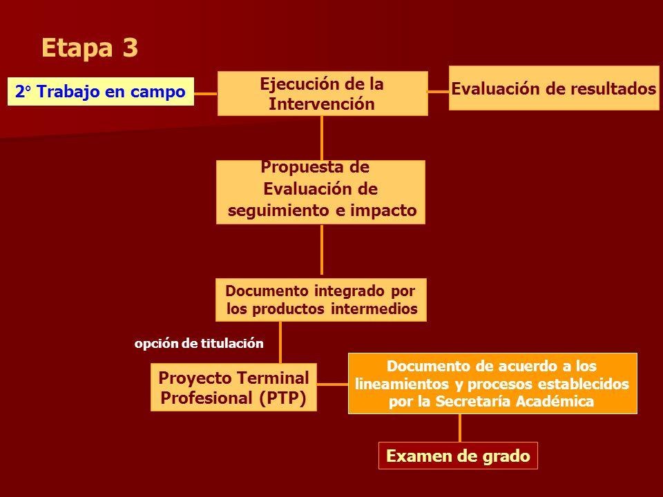 Etapa 3 Evaluación de resultados Ejecución de la Intervención