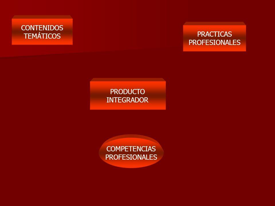 CONTENIDOS TEMÁTICOS PRACTICAS PROFESIONALES PRODUCTO INTEGRADOR COMPETENCIAS PROFESIONALES
