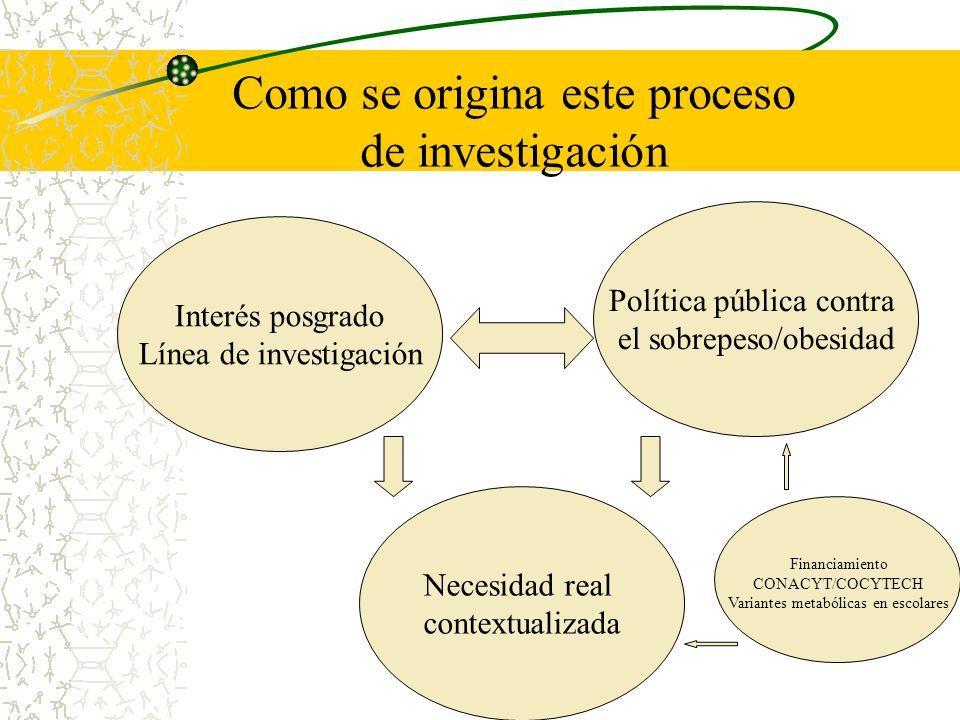 Como se origina este proceso de investigación