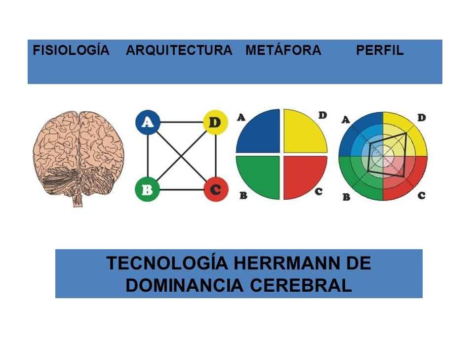 TECNOLOGÍA HERRMANN DE DOMINANCIA CEREBRAL
