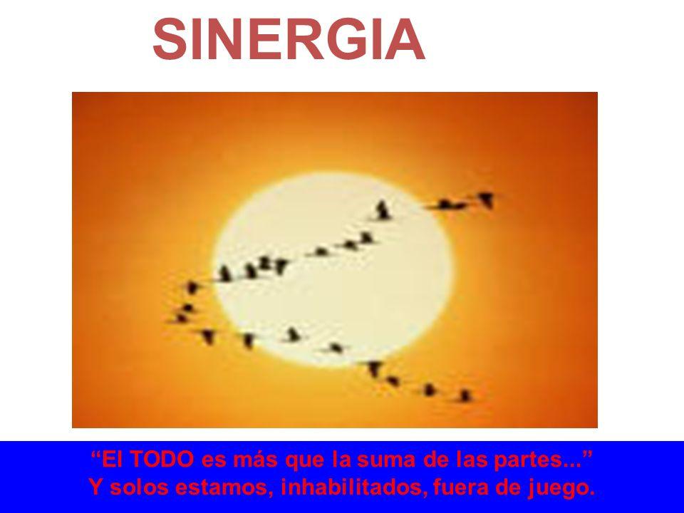 SINERGIA El TODO es más que la suma de las partes...