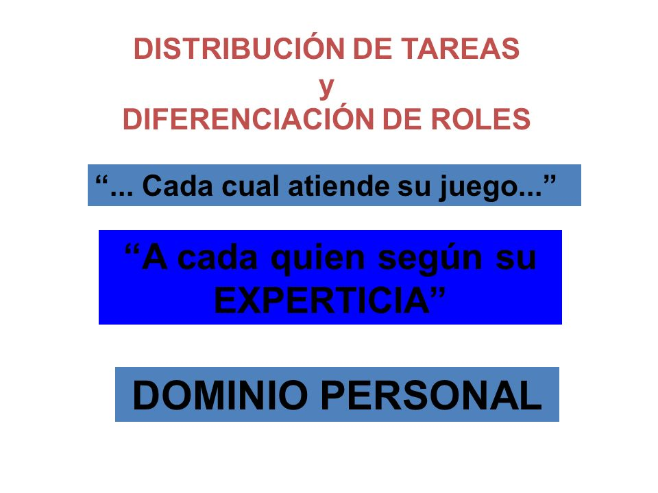 DISTRIBUCIÓN DE TAREAS DIFERENCIACIÓN DE ROLES