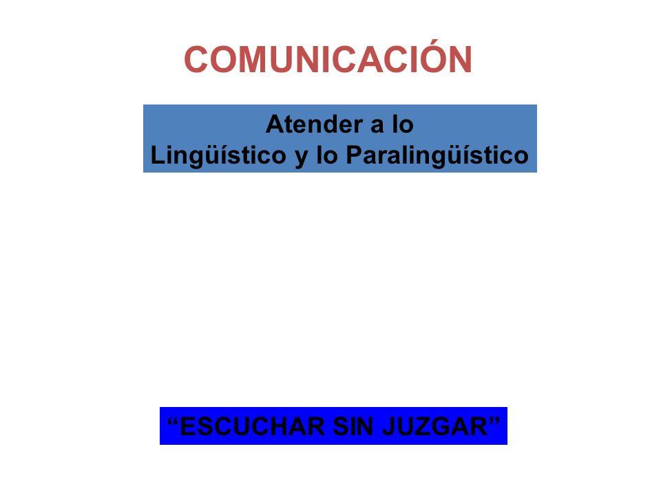 Lingüístico y lo Paralingüístico