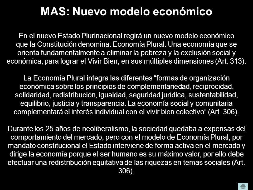 MAS: Nuevo modelo económico