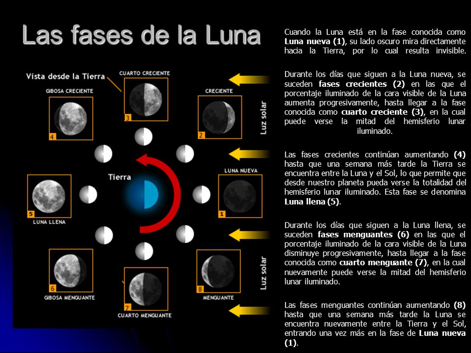 La tierra y la luna ppt video online descargar for Fases lunares del 2016