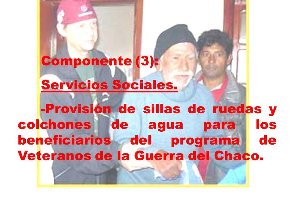 Componente (3): Servicios Sociales.
