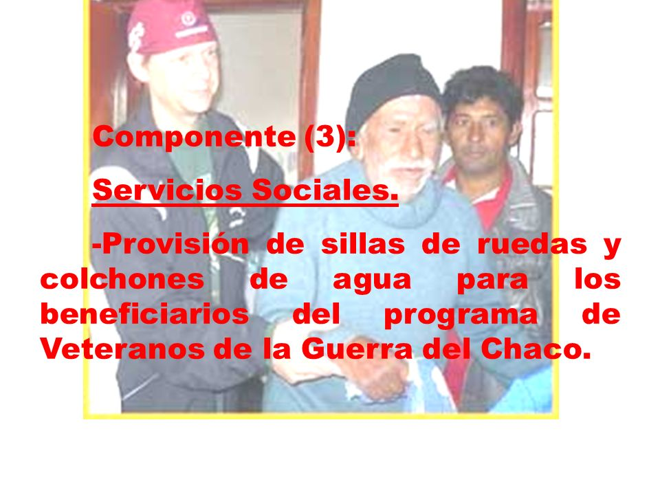 Componente (3):Servicios Sociales.