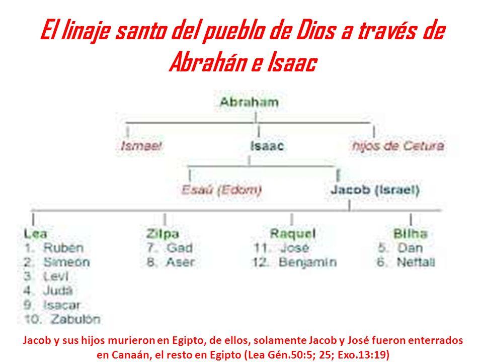 El linaje santo del pueblo de Dios a través de Abrahán e Isaac