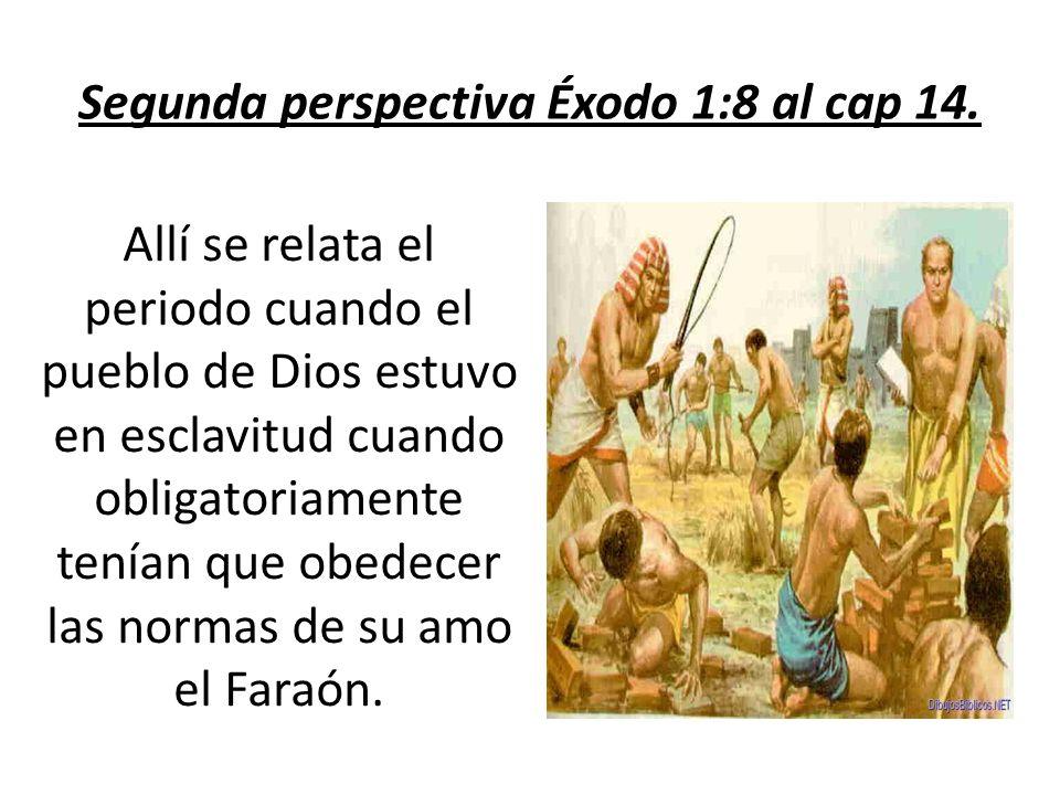 Segunda perspectiva Éxodo 1:8 al cap 14.