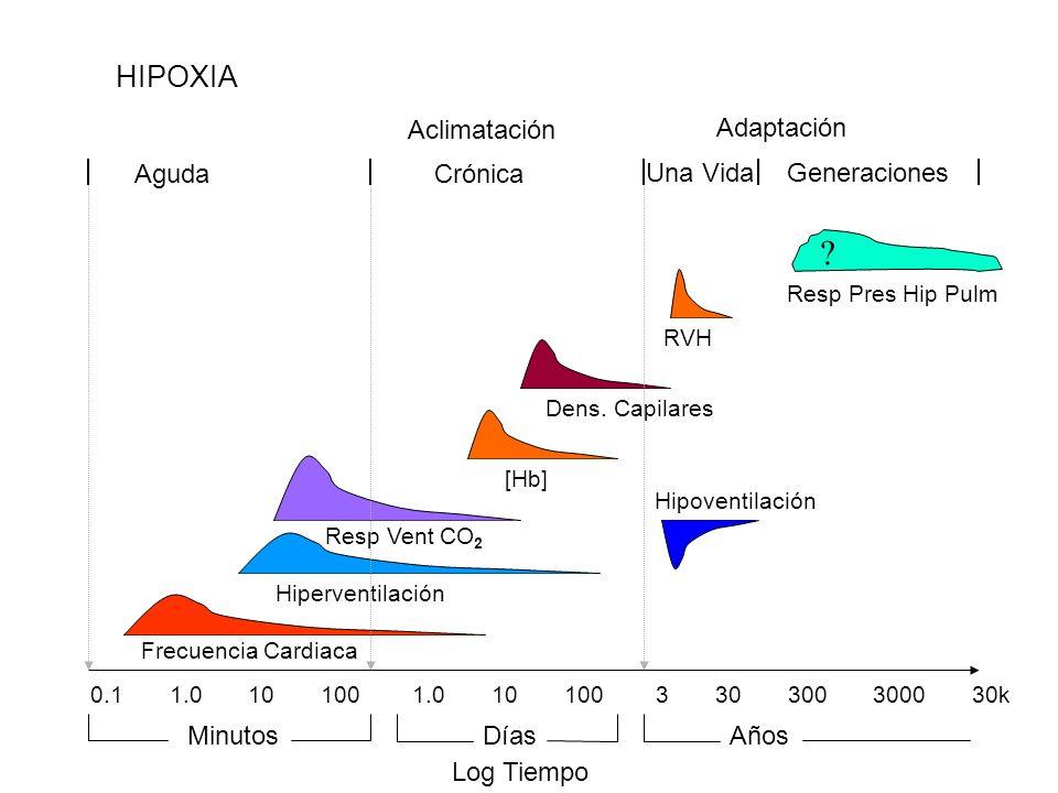 HIPOXIA Crónica Una Vida Aguda Adaptación Aclimatación Generaciones