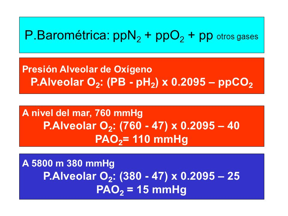 P.Barométrica: ppN2 + ppO2 + pp otros gases