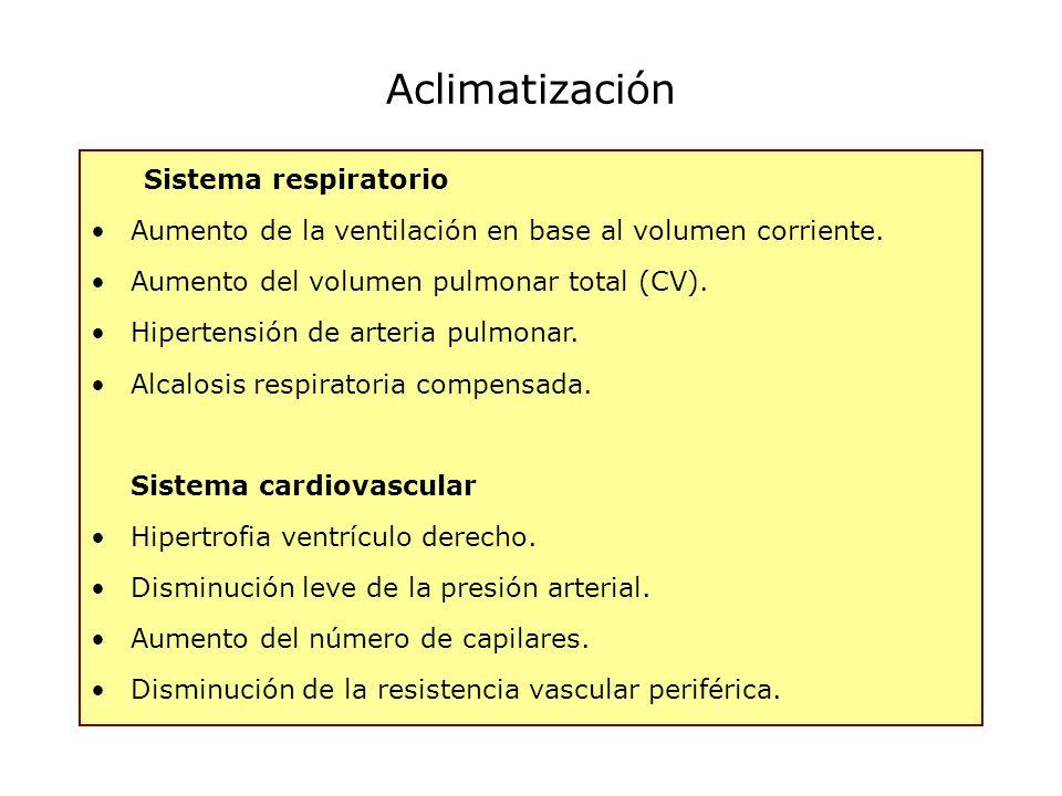 Aclimatización Sistema respiratorio