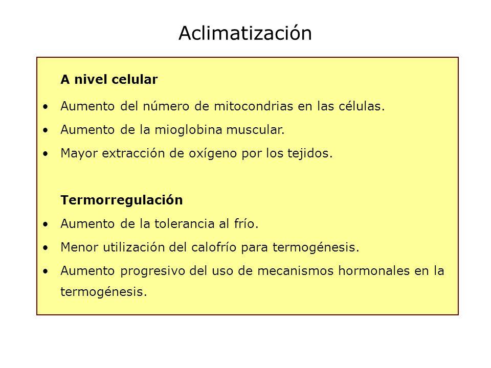 Aclimatización A nivel celular