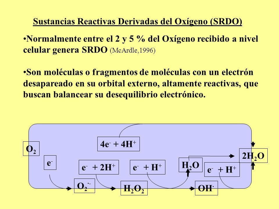 Sustancias Reactivas Derivadas del Oxígeno (SRDO)