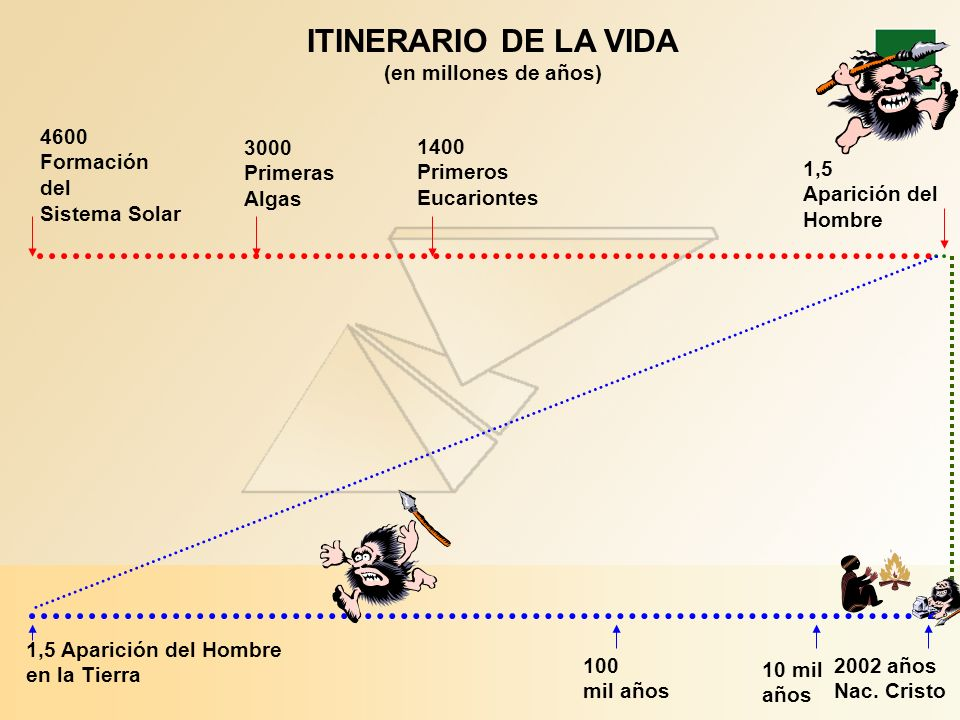 ITINERARIO DE LA VIDA (en millones de años) 4600 1400 Formación 3000