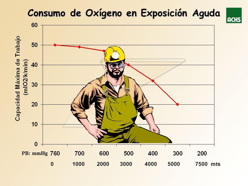 Consumo de Oxígeno en Exposición Aguda