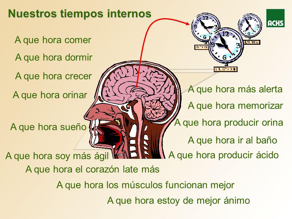 Nuestros tiempos internos