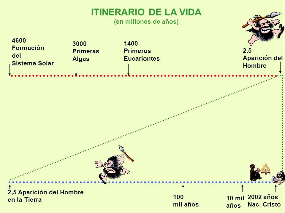 ITINERARIO DE LA VIDA (en millones de años) 4600 3000 1400 Formación