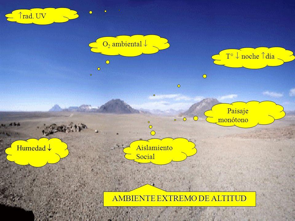 AMBIENTE EXTREMO DE ALTITUD
