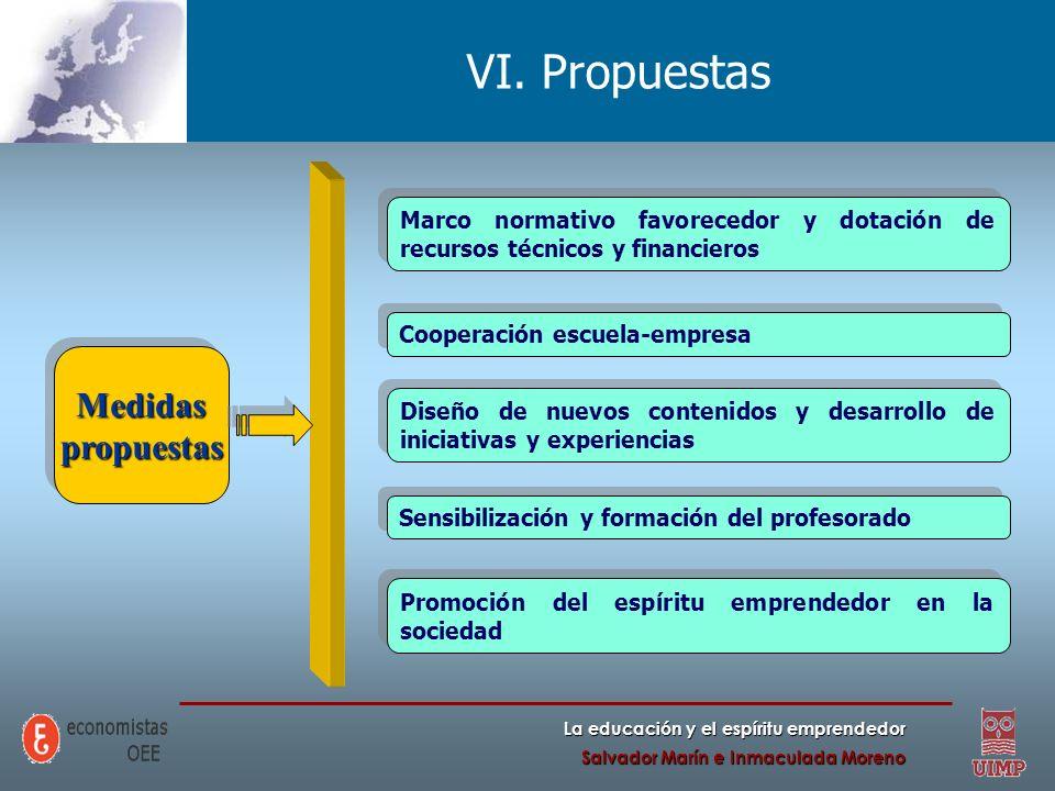 VI. Propuestas Medidas propuestas