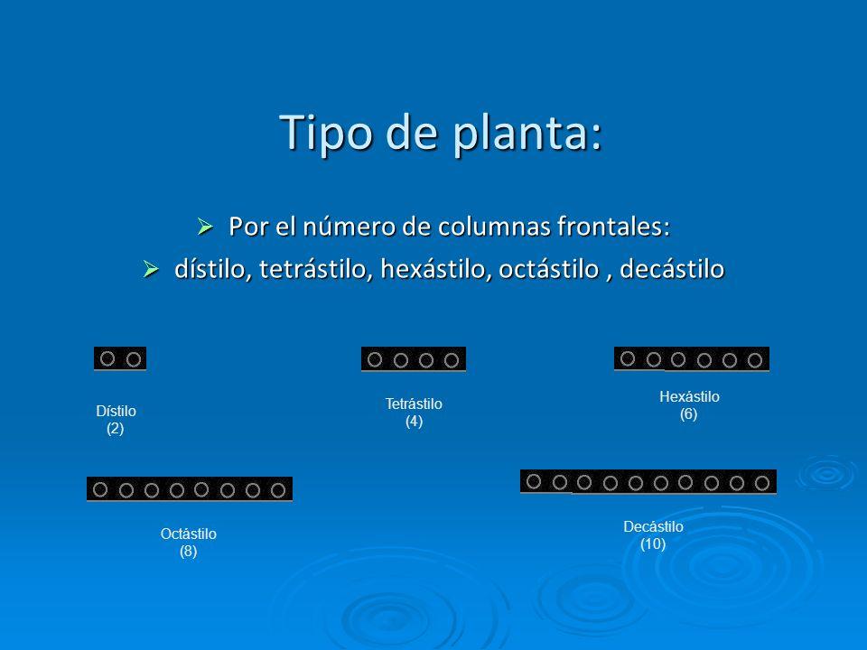 Tipo de planta: Por el número de columnas frontales: