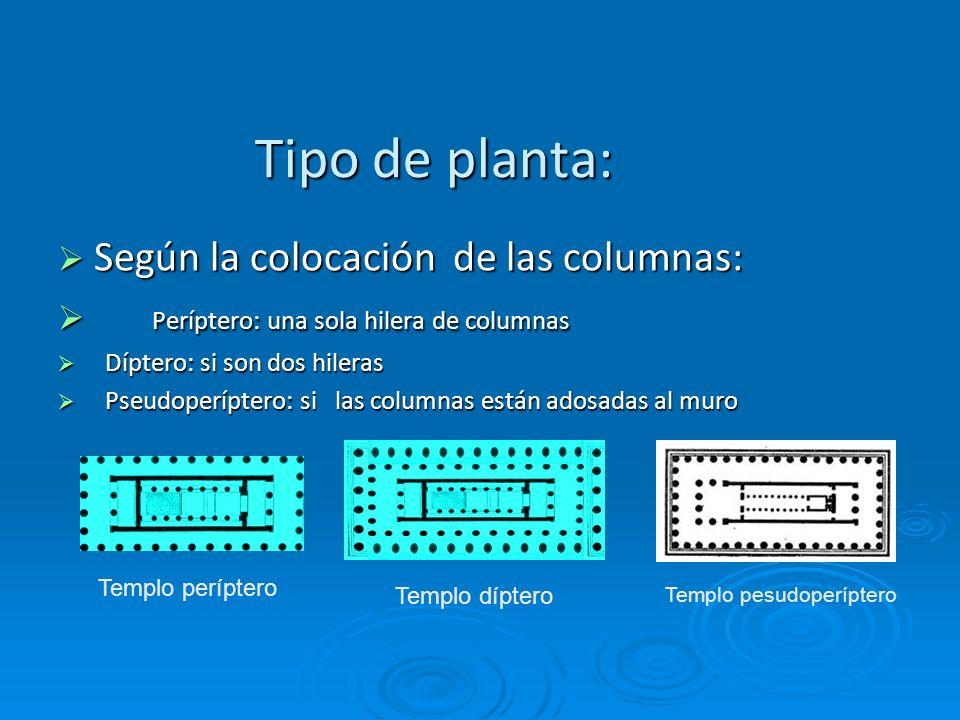 Tipo de planta: Según la colocación de las columnas: