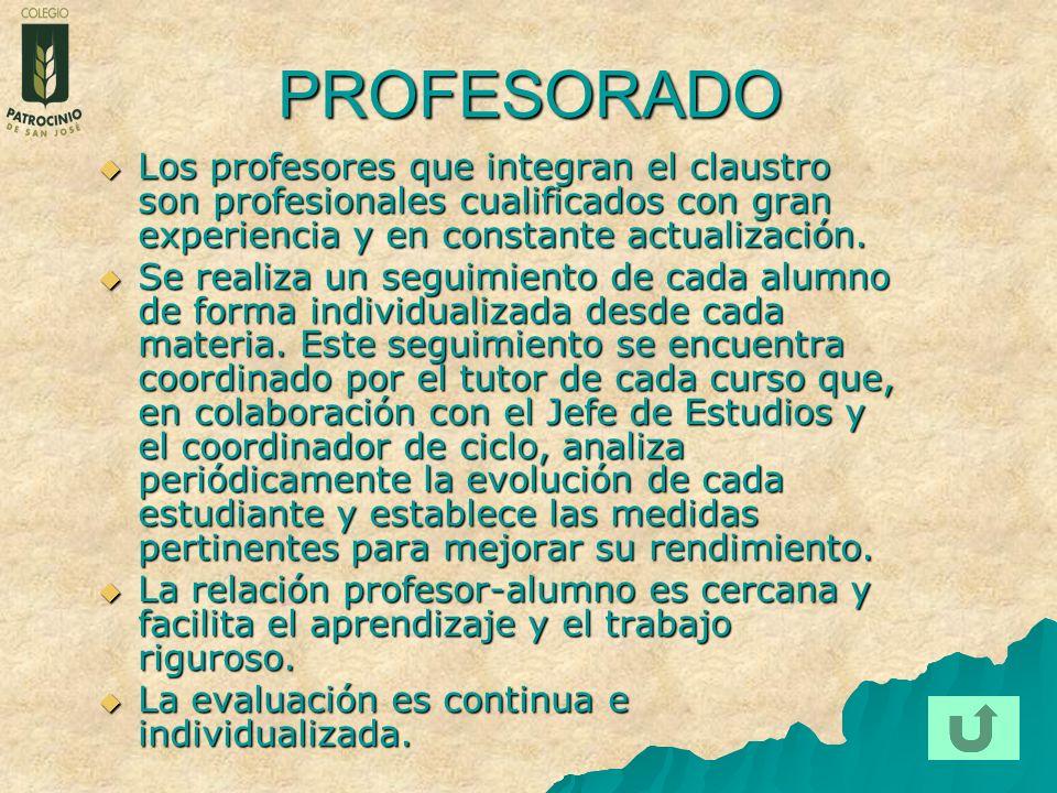 PROFESORADO Los profesores que integran el claustro son profesionales cualificados con gran experiencia y en constante actualización.