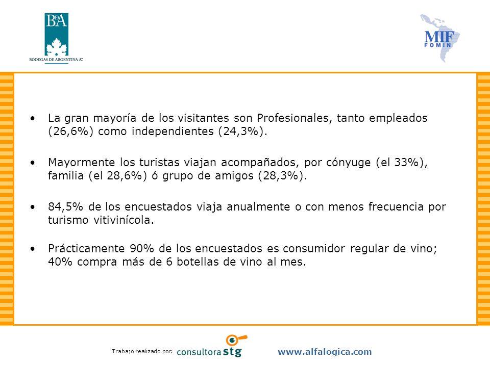 La gran mayoría de los visitantes son Profesionales, tanto empleados (26,6%) como independientes (24,3%).