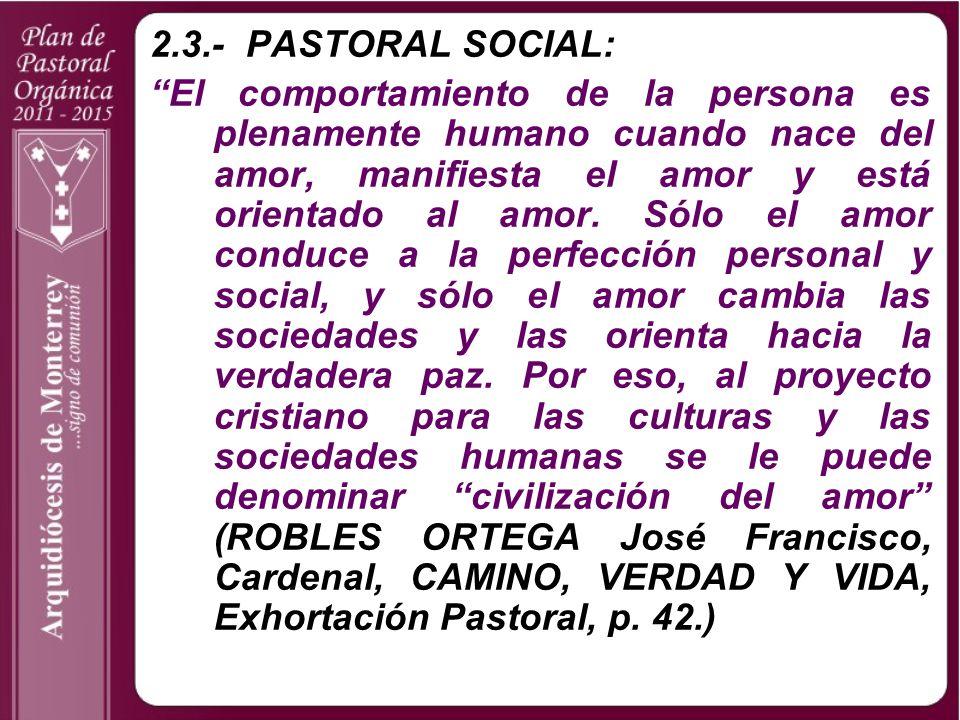 2.3.- PASTORAL SOCIAL: