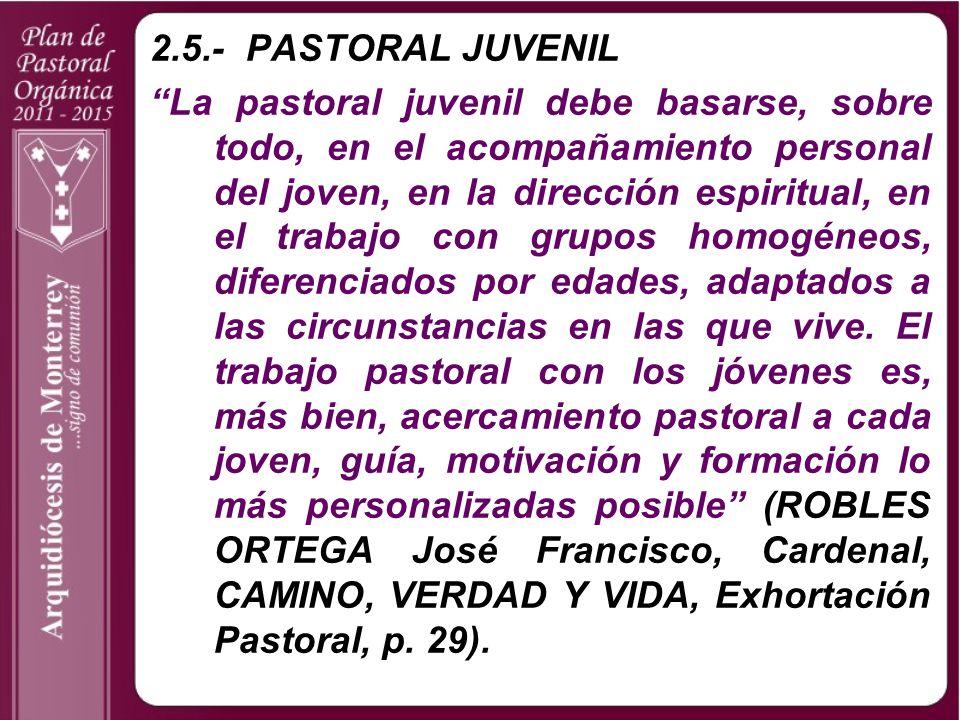 2.5.- PASTORAL JUVENIL