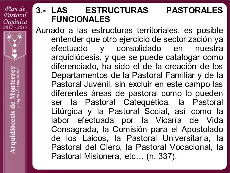 3.- LAS ESTRUCTURAS PASTORALES FUNCIONALES