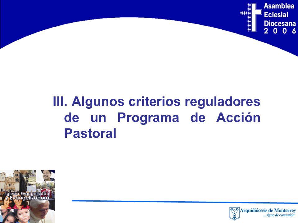 III. Algunos criterios reguladores de un Programa de Acción Pastoral