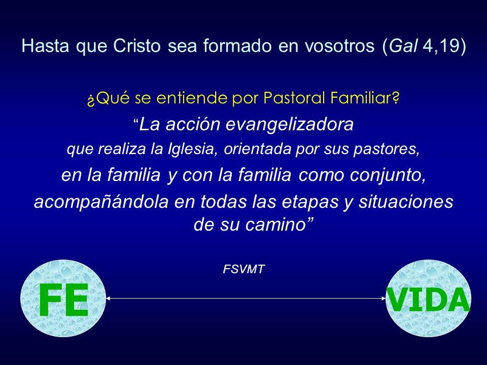Hasta que Cristo sea formado en vosotros (Gal 4,19)